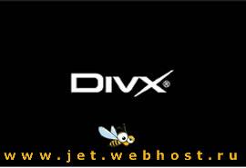 ������: DivX v.6.5.1.1
